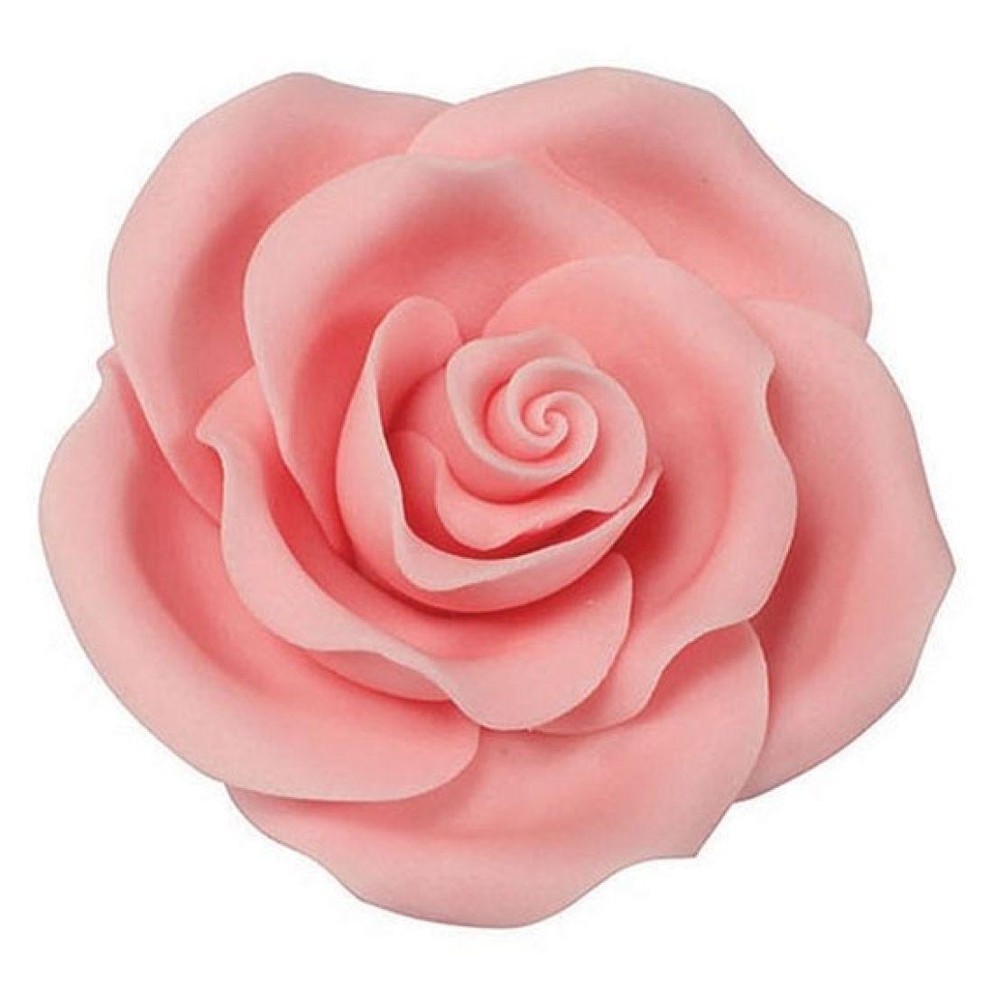 Sugar Soft Roses Light Pink 63mm Squires Kitchen Shop