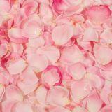 PME 100% Natural Flavour - Rose (25g / 0.88oz)