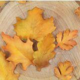 FMM Cutters Seasonal Leaves Set