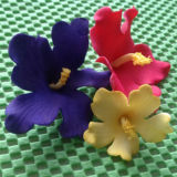 FMM Cutter Hawaiian Flower Set of 3