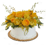 Easy Arranger Cake Vase 8 Inch