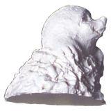 SK-GI Silicone Mould 3D Mole