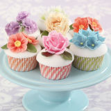 SK Blue Bonbon Candy Swirl Cupcake Cases Pack of 36
