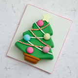 BoxBake Christmas Tree Baking Box