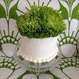 Easy Arranger Cake Vase 6 Inch