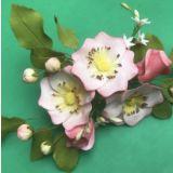 FMM Cutters Wild Rose Set