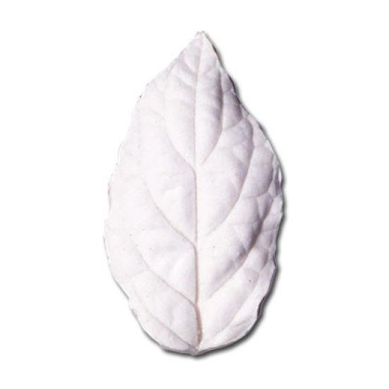 SK Great Impressions Leaf Veiner Scutellaria (Helmet Flower) M