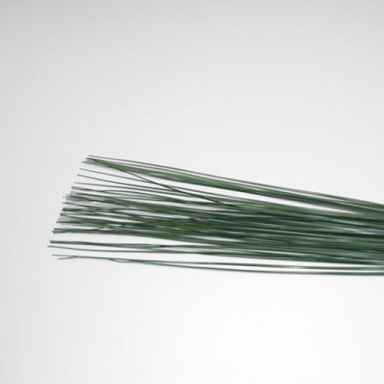 Green Bear Grass 42cm