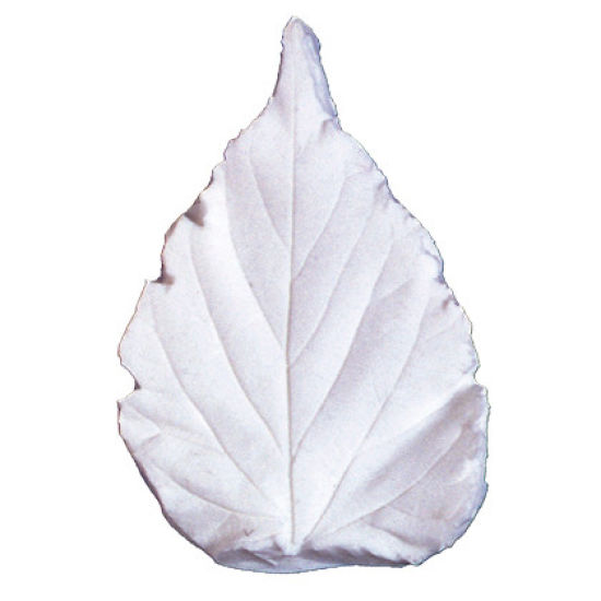 SK-GI Leaf Veiner Bignonia Grandiflora-C 7/6.5cm Medium Set of 2