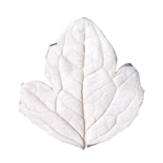 SK-GI Leaf Veiner Clematis Small 4.5cm