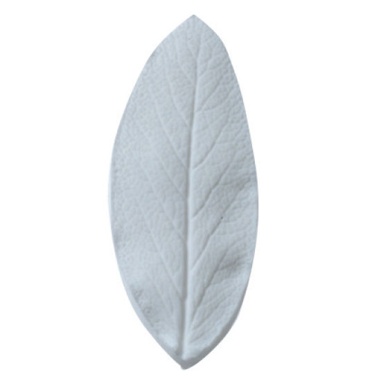 SK Great Impressions Leaf Veiner Sage Large