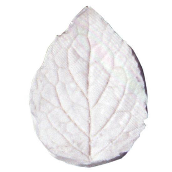 SK-GI Leaf Veiner Nettle Very Large 16.5cm