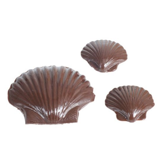 Chocolate Mould Oyster Shell Two Sizes
