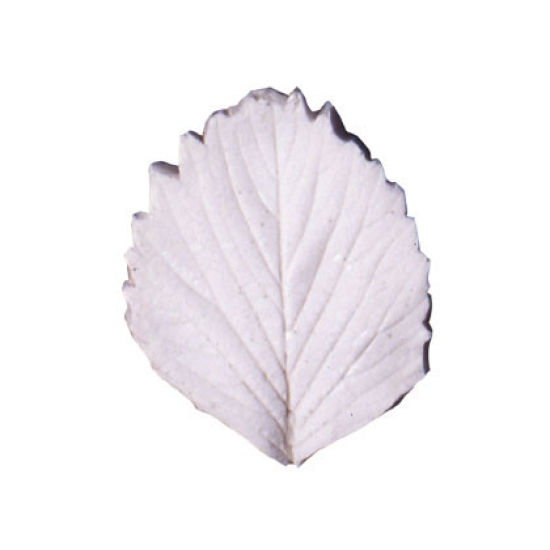SK Great Impressions Leaf Veiner Strawberry 6.0cm L