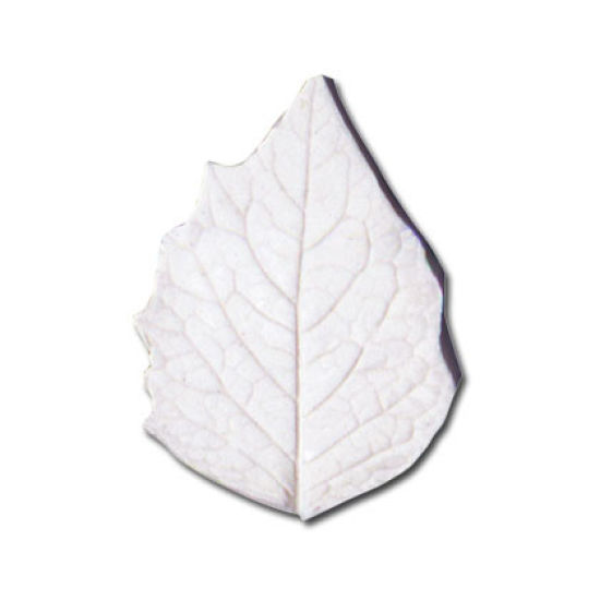 SK-GI Leaf Veiner Physalis (Chinese Lantern) Large 6.0cm