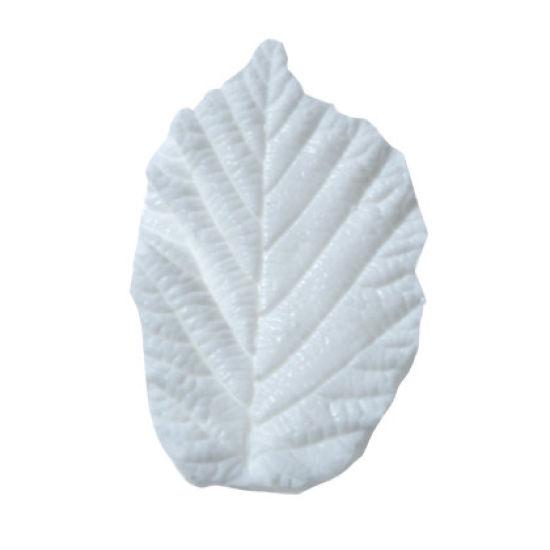 SK-GI Leaf Veiner Hazel (Corylus)Meduim 3.5cm