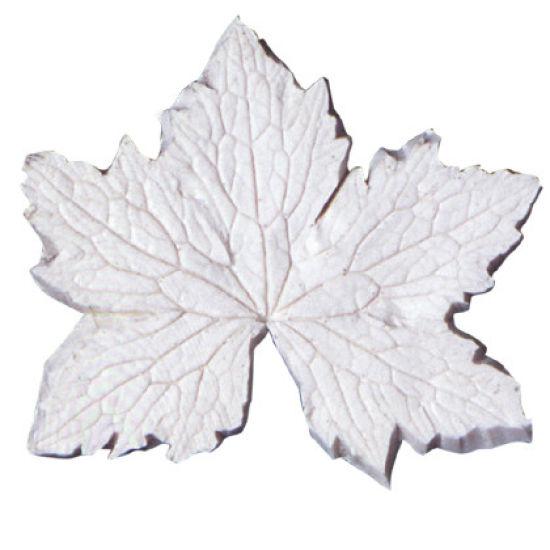SK-GI Leaf Veiner Cranesbill (Geranium -P) Large 7.5cm