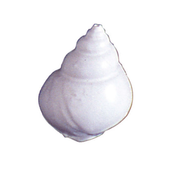 SK-GI Silicone Mould Shell Latirus Large