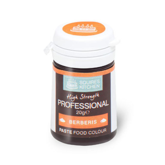 SK Professional Food Colour Paste Berberis 20g