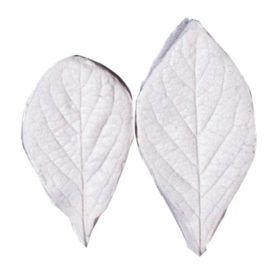 SK-GI Leaf Veiner Honeysuckle-Fly (Lonicera) - Set of 2 - 5.0/ 4.0cm