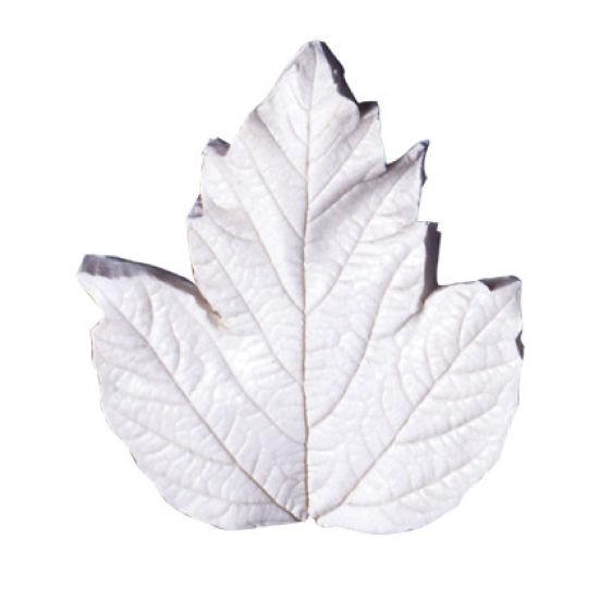 SK-GI Leaf Veiner Guelder Rose (Viburnum-O) Large 7.5cm