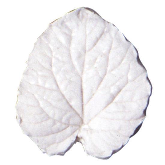SK-GI Leaf Veiner Campanula (Bellflower) 4.0cm