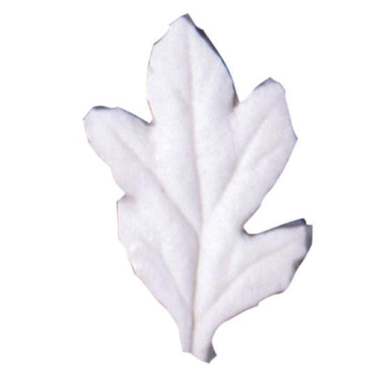 SK-GI Leaf Veiner Hawthorn (Crataegus) 4.5cm