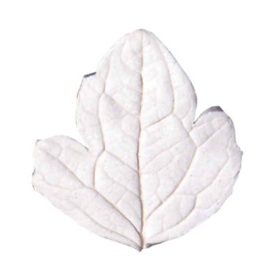 SK-GI Leaf Veiner Clematis Extra Large 8.5cm (wide)
