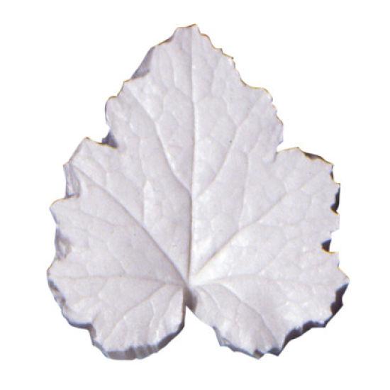 SK-GI Leaf Veiner Heuchera (Coral Flower) Large 7.5cm