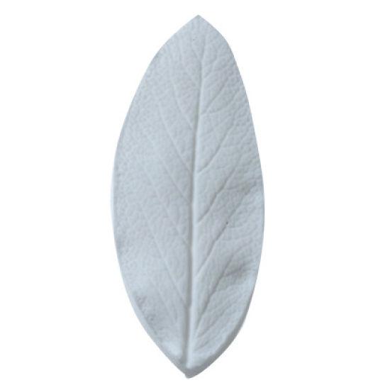 SK Great Impressions Leaf Veiner Sage Small