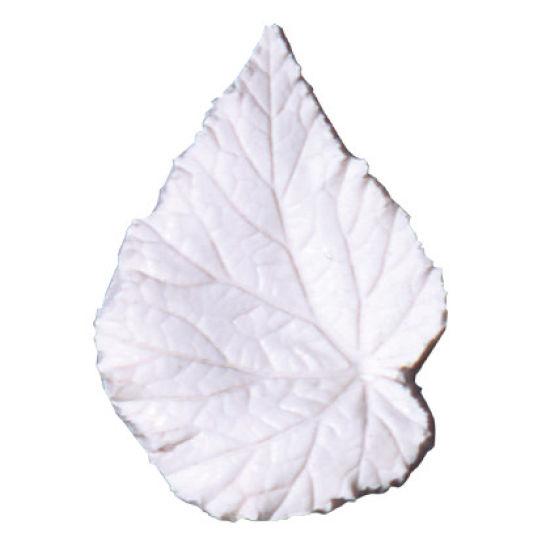 SK Great Impressions Leaf Veiner Begonia Rex (King Begonia) Large 9.0cm