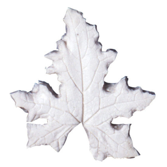 SK-GI Leaf Veiner Bryony- White (Cretica) 5.0/4.0cm Set of 2