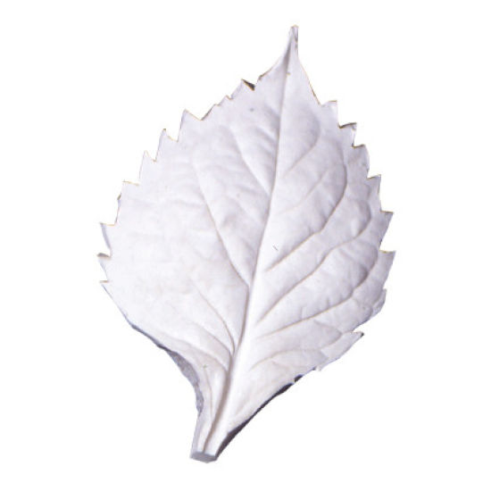 SK-GI Leaf Veiner Hydrangea Very Large 9.0cm