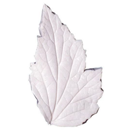 SK-GI Leaf Veiner Anemone Japanese -Bi-Lobed 7.5cm