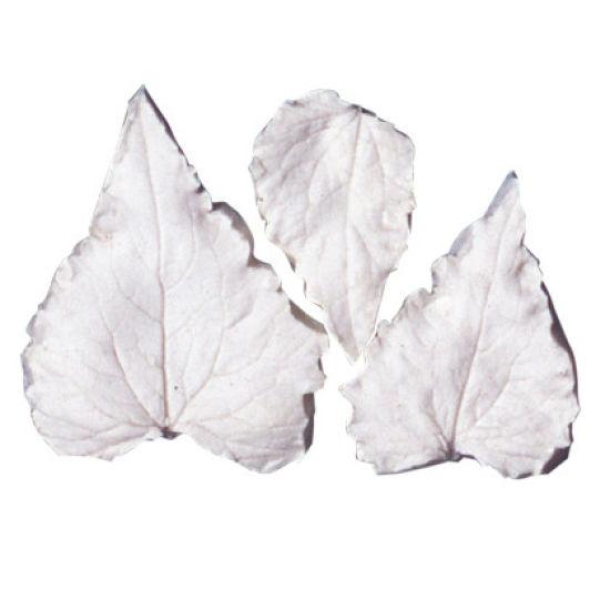 SK-GI Leaf Veiner Honesty (Lune)- Set of 3 - 5.0/3.5/3.0cm