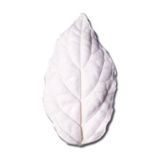 SK Great Impressions Leaf Veiner Scutellaria (Helmet Flower) L