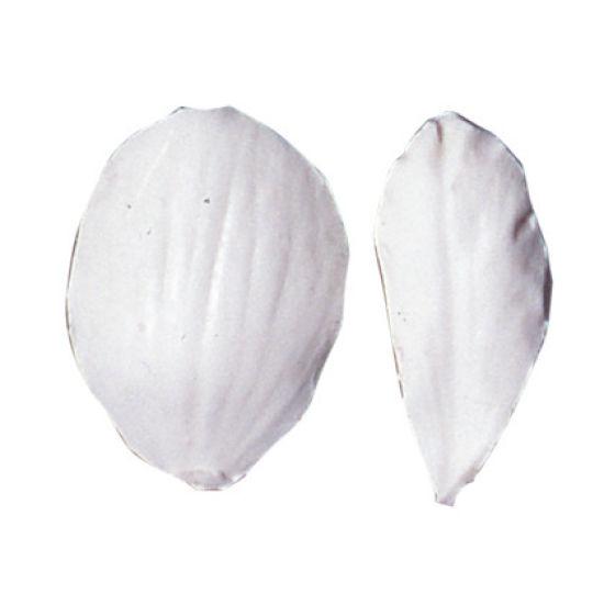 SK Great Impressions Petal Veiner Begonia