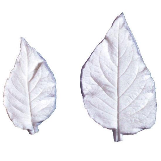 SK-GI Leaf Veiner Datura Large 8cm