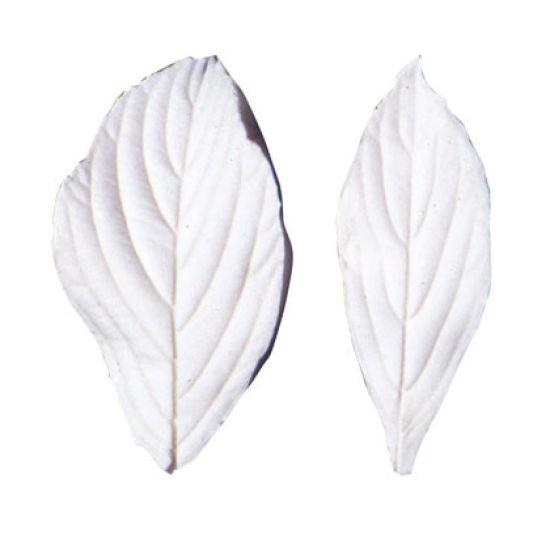 SK Great Impressions Leaf Veiner Viburnum 6.0/5.5cm