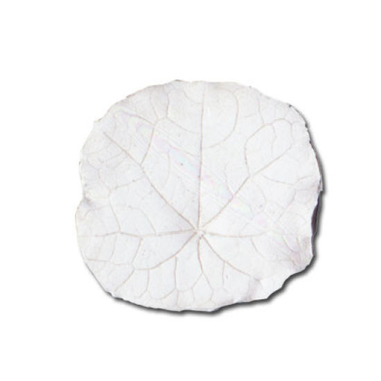 SK-GI Leaf Veiner Nasturtium Large 6.0cm